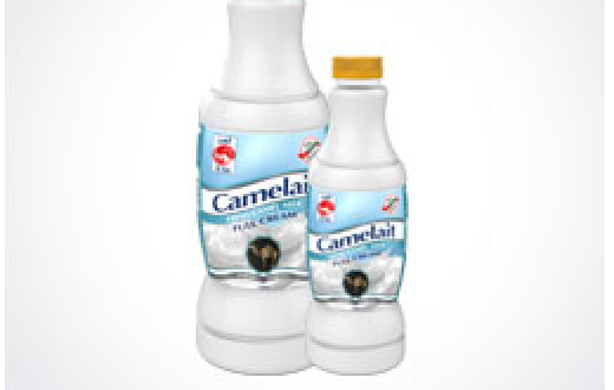 camel milk Drink camel's milk really and, for those who cannot drink the milk from a goat or cow, is it possible camel's might be for you as a nutritionist for children with autism for 10 years, my research and clinical experience indicate that most children with autism cannot adequately tolerate dairy.