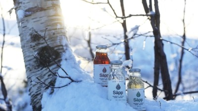 Säpp – introducing birch water to the global markets